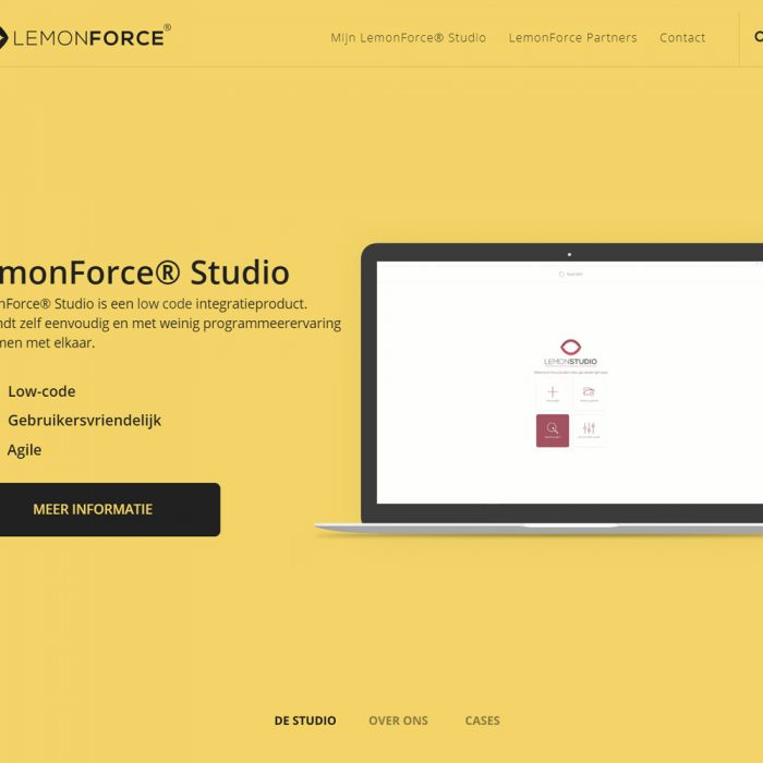 LEMONFORCE: frisse webteksten en cases